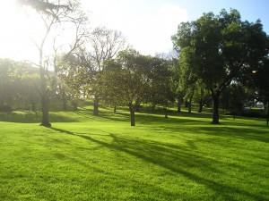 Flagstaff-Gardens-2